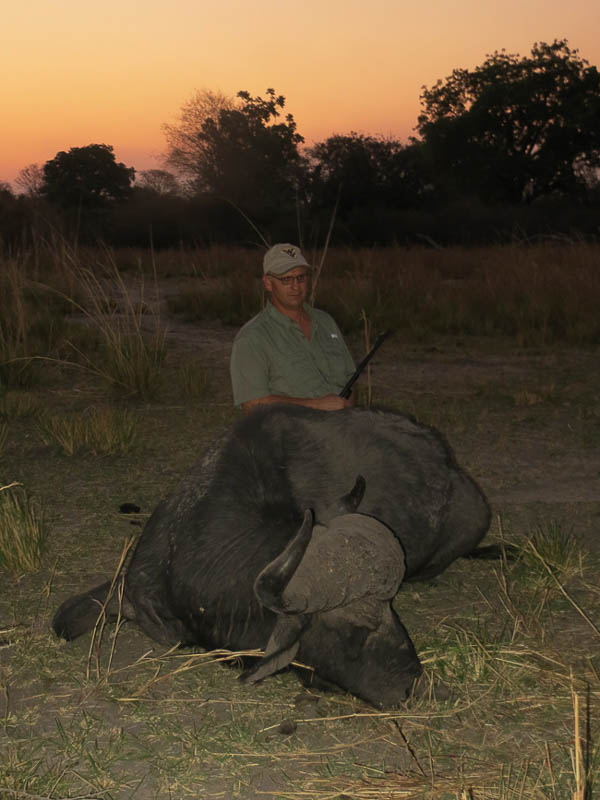 Conservation Hunting Trophies - Buffalo
