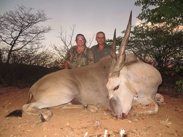 Conservation Hunting Trophies - Eland